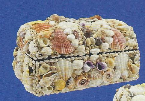 Natural Shells Treasure Box